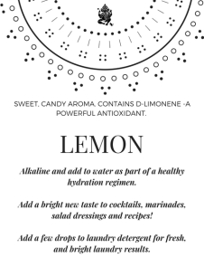 Lemon Class Display Card