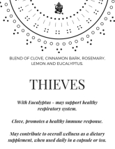 Thieves Class Display Card
