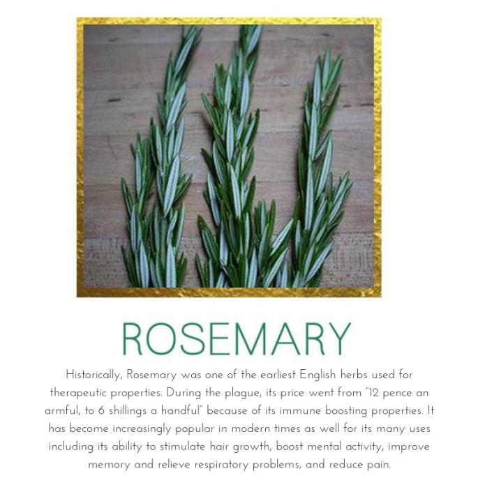 Rosemary_SMB